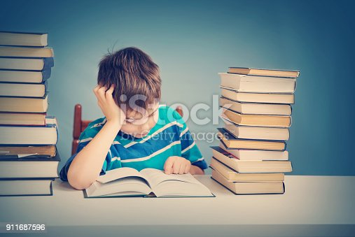683105722 istock photo seven years old child reading a book 911687596