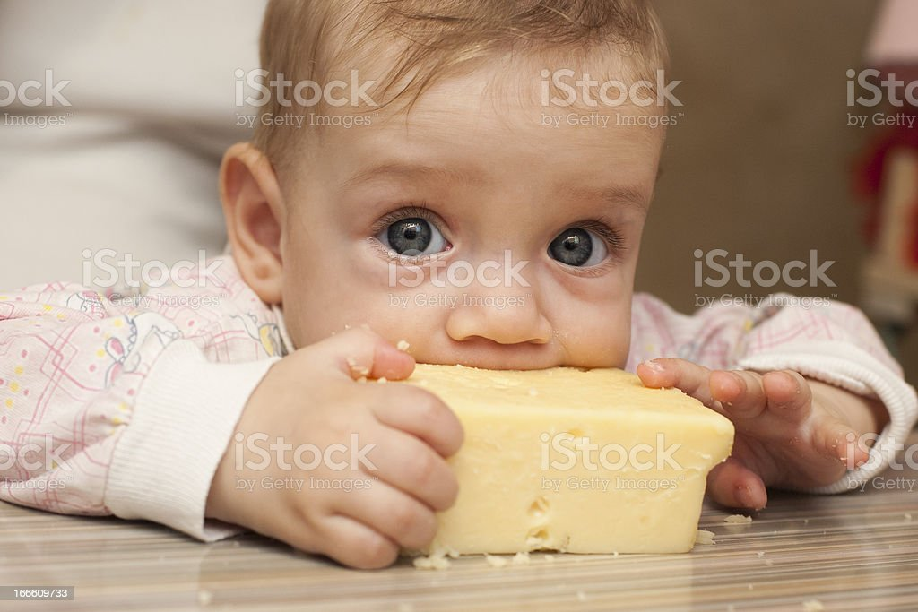 Seven-month baby eats a big piece of cheese stock photo