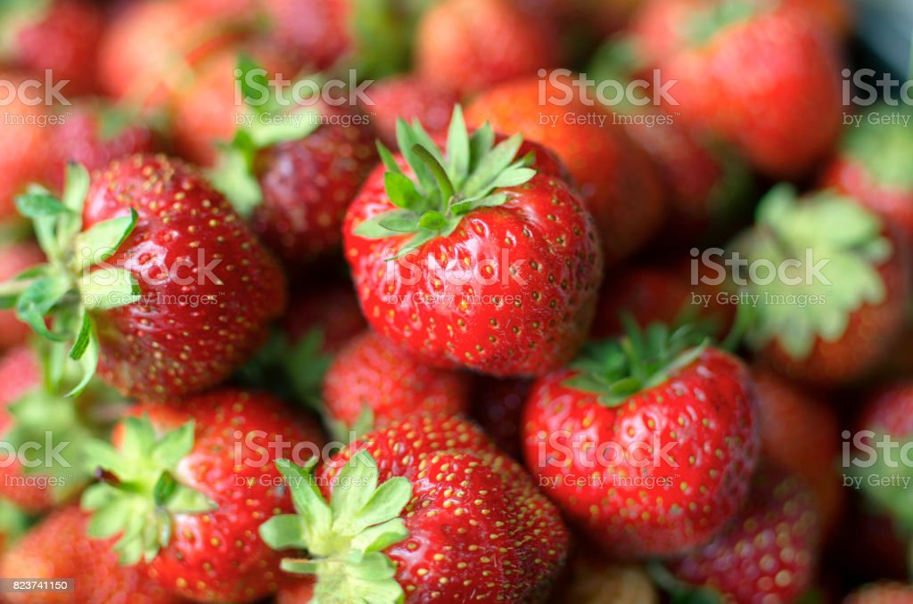 Several bright red ripe berries of strawberry stock photo