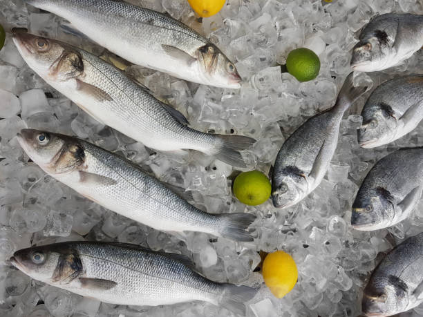 Several Fresh Fishes on Ice Cubes stock photo