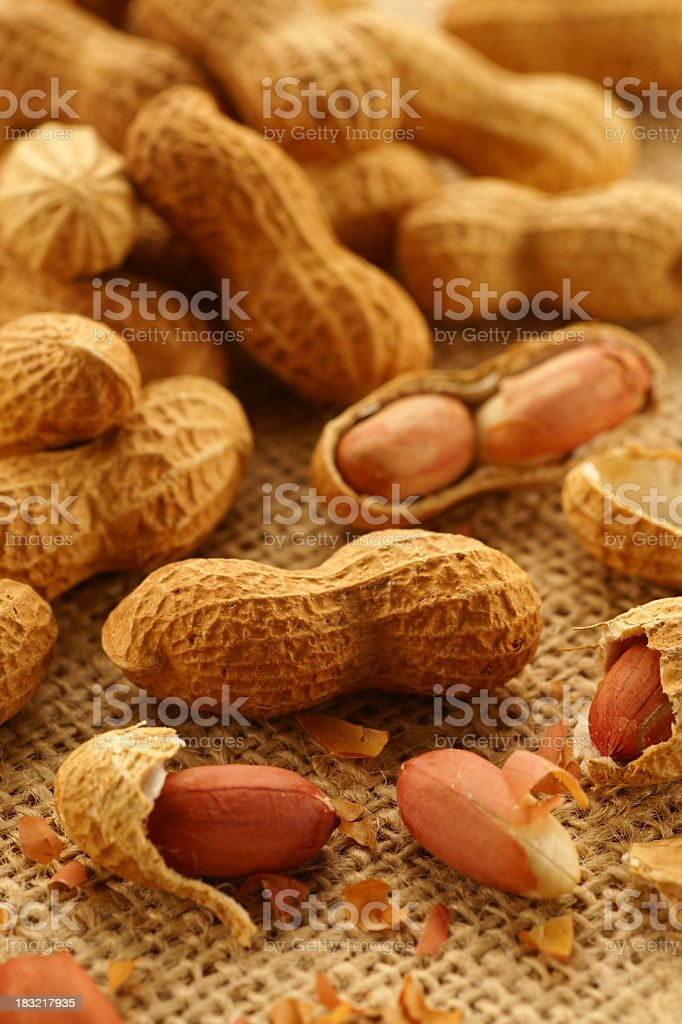 Several freshly roasted peanuts stock photo