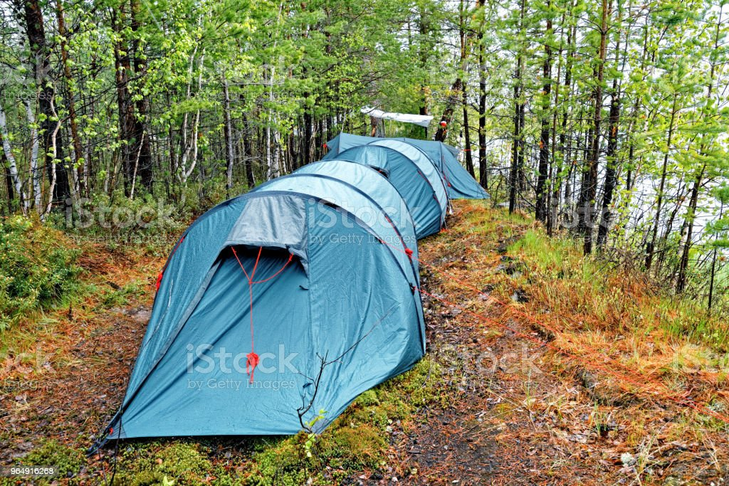 Several large tents in the taiga on the shore of the reservoir royalty-free stock photo
