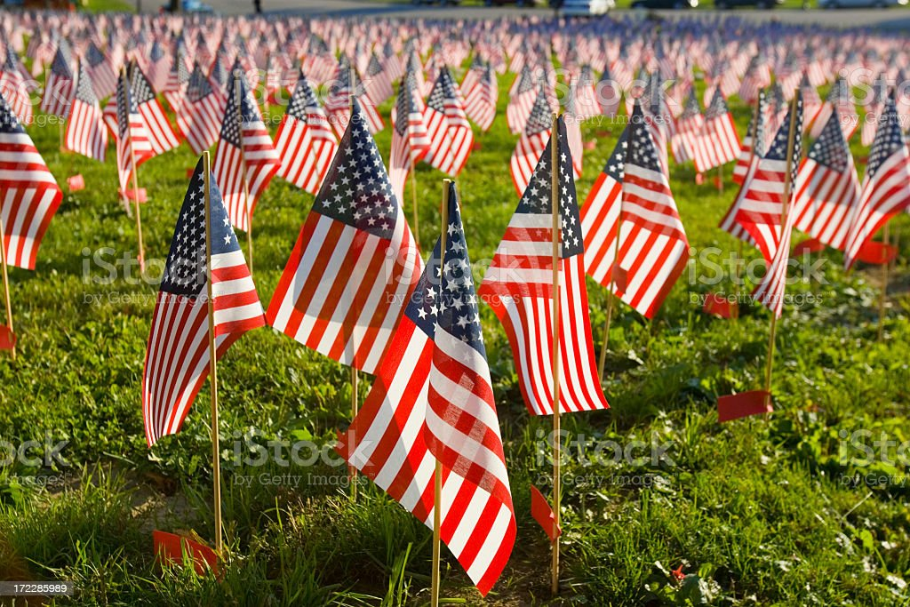 Several miniature flags planted in the grass  stock photo