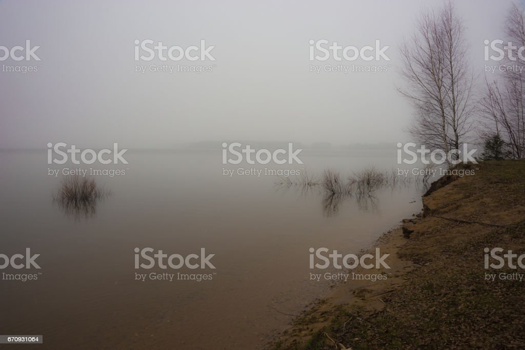 Several trees and bushes almost inside the waters of Mozhayskoe sea flooded in spring stock photo