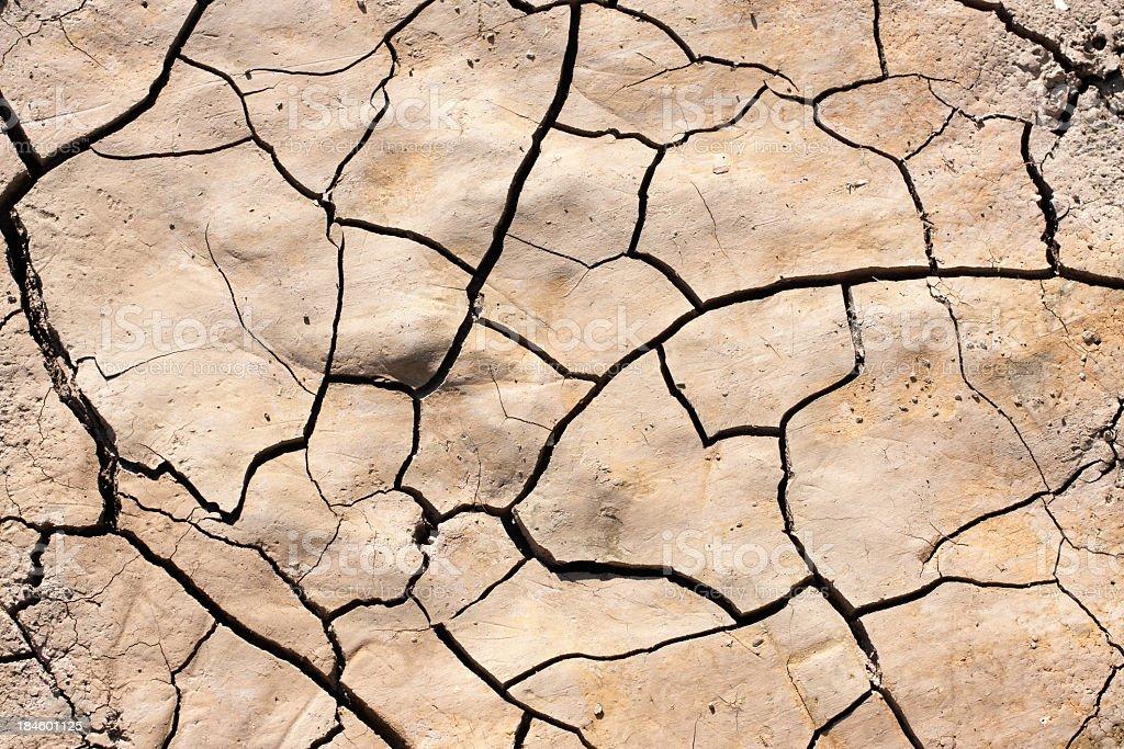 Dried ground texture.