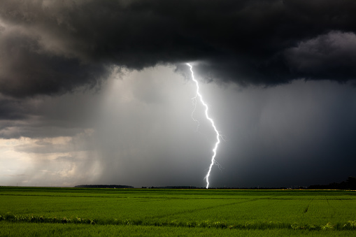 Lightning and heavy rain from a strong thunderstorm during the day.