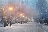 Severe weather in Kiev citizens favorite park, twilight hid fog and snowfall old trees, fall asleep benches, lights shine through the mist, cold and damp, a strong wind blows snowflakes quickly through the branches