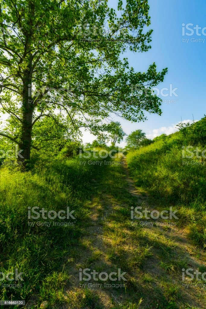 Sevier County Countryside stock photo