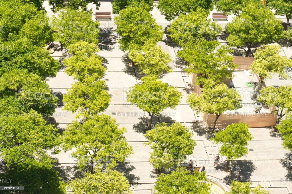Seville Cathedral gardens from the Cathedral Tower. stock photo