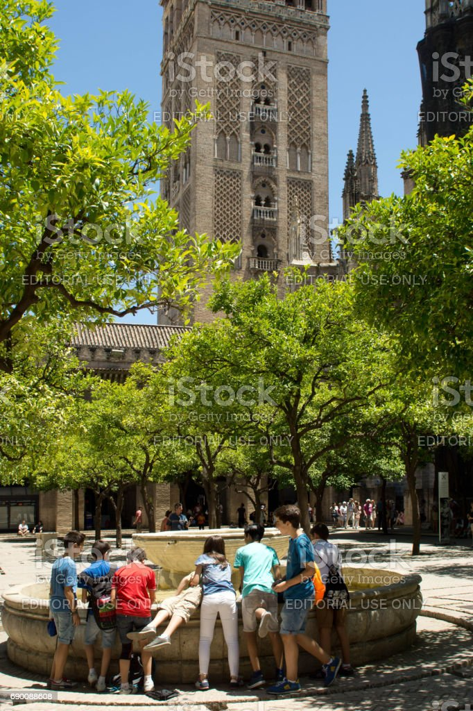 Seville Cathedral orangery stock photo