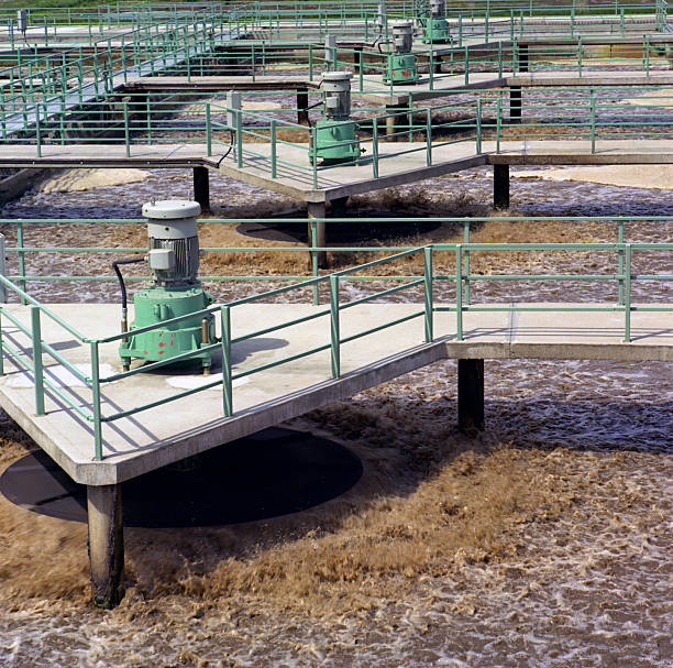 sewage farm - bioremediation stock photos and pictures