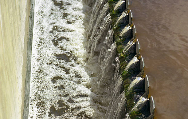 sewage treatment - bioremediation stock photos and pictures