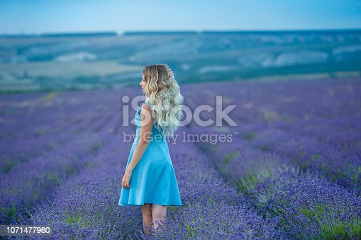 873786782 istock photo Sex appeal blond woman in airy blue dress enjoy life time vacation on fresh lavender field by walking or spinning around. Sylph attractive lady dancing on flowers. 1071477960