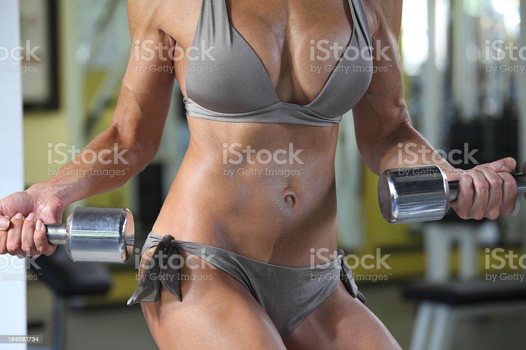Sexy Body Search