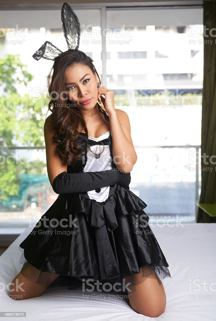 Sexy Bunny Costume stock photo