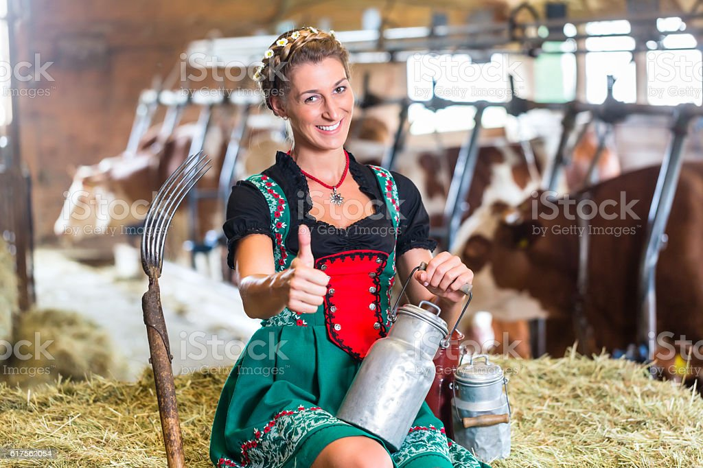 Sexy Countrywoman in cowhouse stock photo