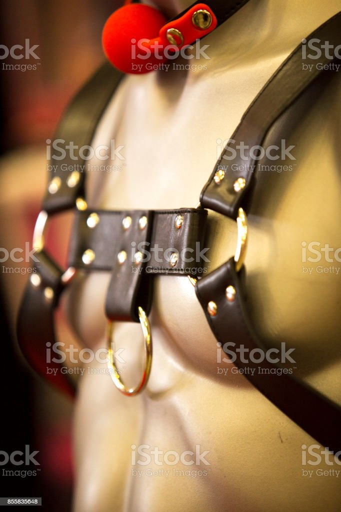 erotic photography sexy bondage