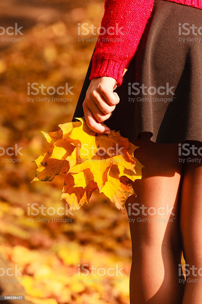 Sexy legs in the park. royalty-free stock photo