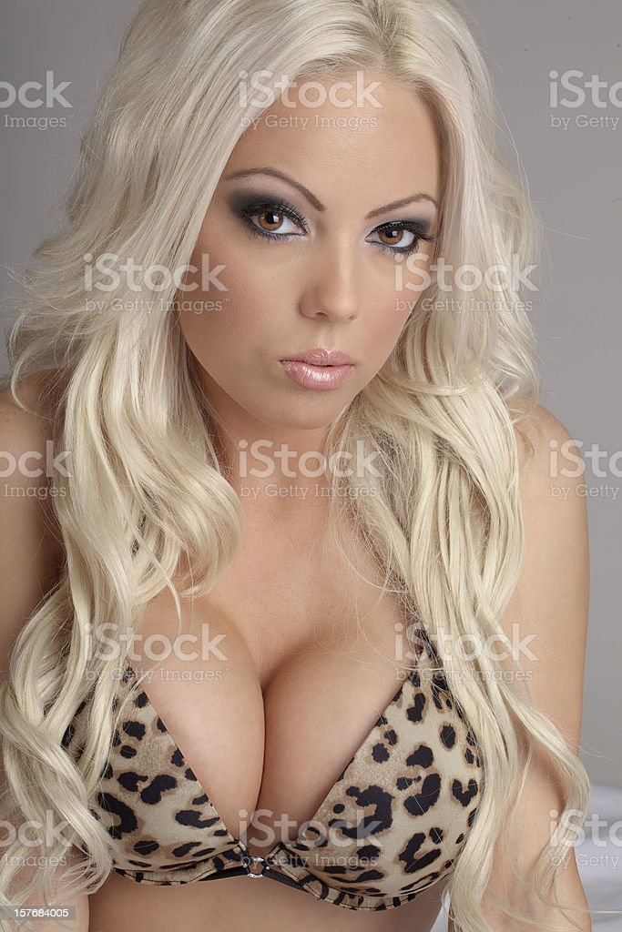 Sexy woman in Animal Print Bra stock photo