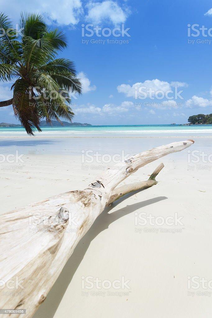 Seychellen – Foto