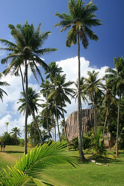seychelles1 – Foto