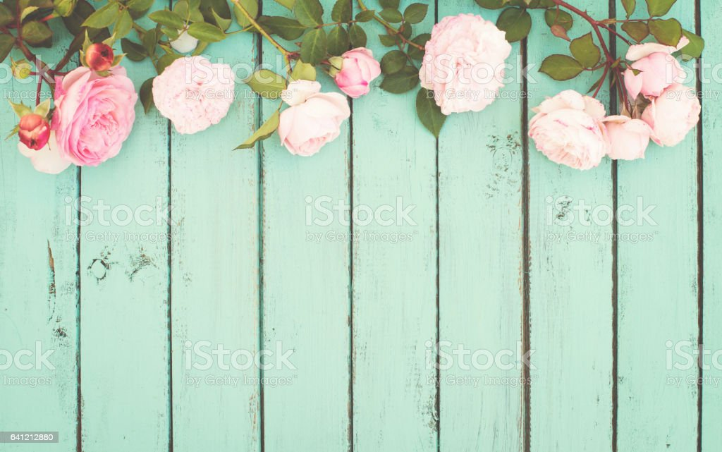 Shabby Chic Vintage Background with Roses. stock photo
