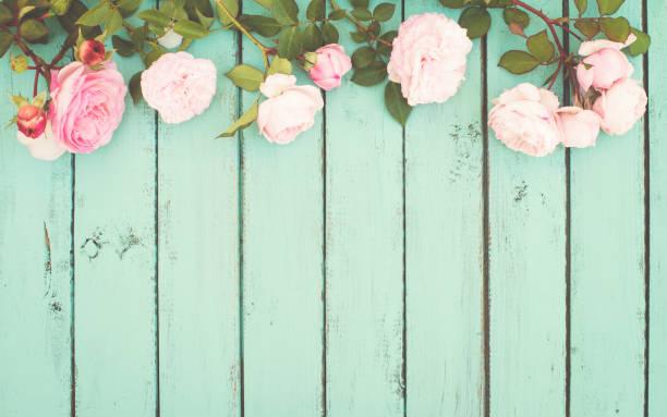 Shabby Chic Vintage-Hintergrund mit Rosen. – Foto