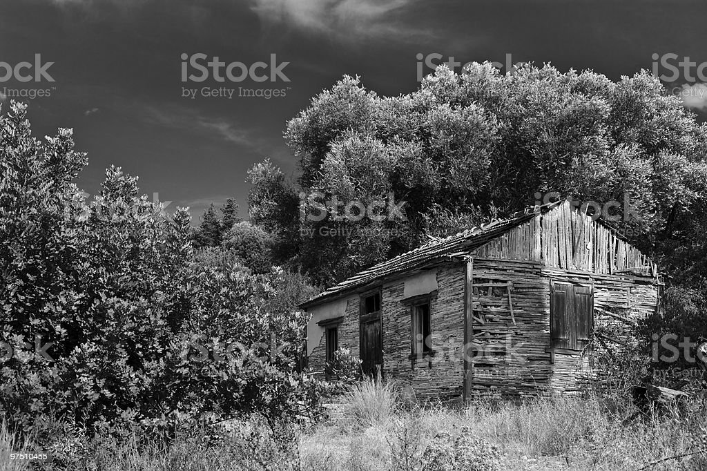 Shack stock photo