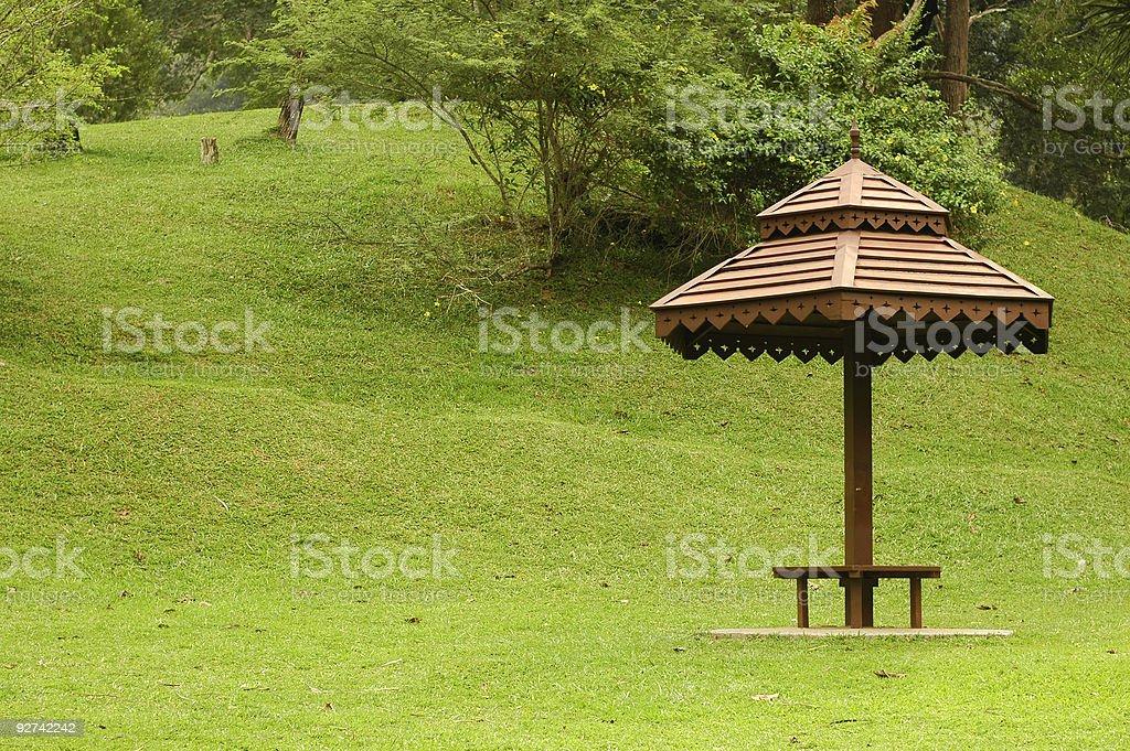 Schatten im park Lizenzfreies stock-foto