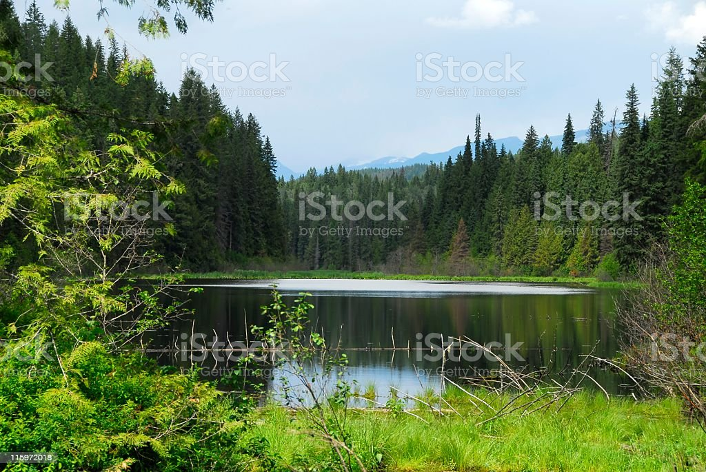 Shadow Lake,British Columbia stock photo
