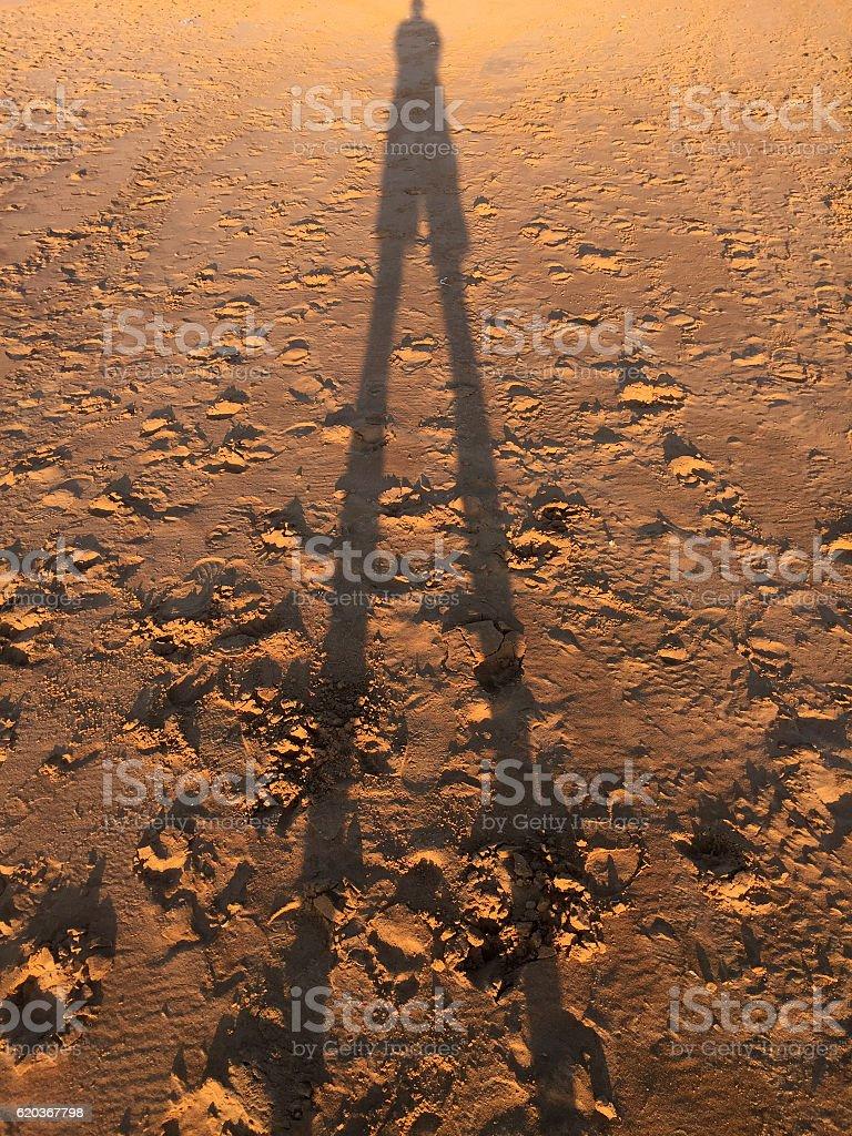 Homem da Sombra foto de stock royalty-free