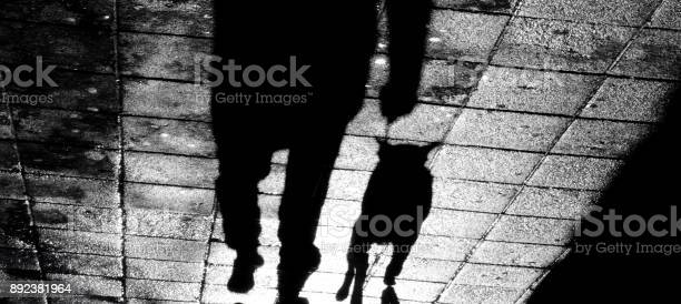 Shadow of a man with a dog on a leash in the night picture id892381964?b=1&k=6&m=892381964&s=612x612&h=pcri2ykiw7cjggcgdn 1cg2agzc9louauh wagjqf2c=