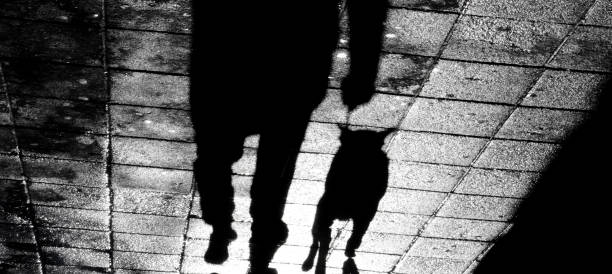 Shadow of a man with a dog on a leash in the night