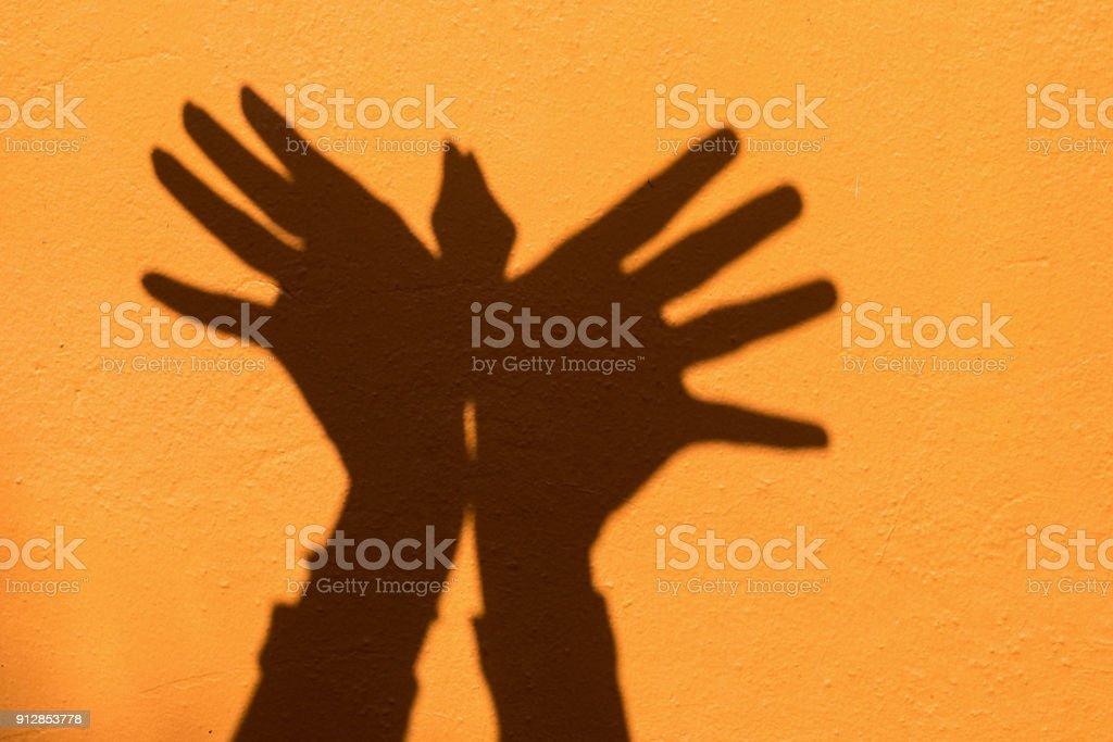 Shadow Of Hand Symbol Mean Animal Like A Bird On Orange Wall
