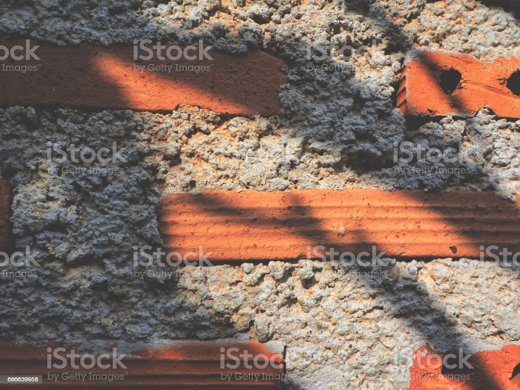 Shadow of leaves royalty-free stock photo