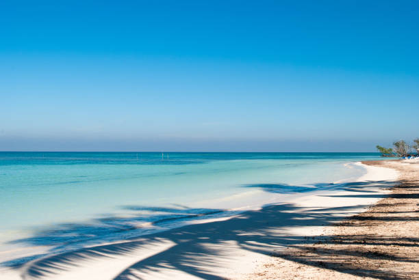 Shadow of palm on the beach of Cayo Jutias in Cuba. Boat and blue sea have a rest on the golden sand. Beach in the Gulf of Mexico. – zdjęcie