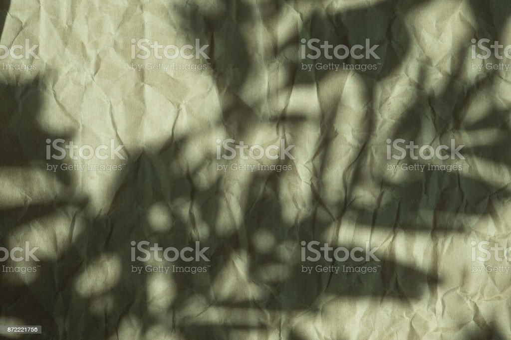 shadow of the leaves on crumpled paper stock photo