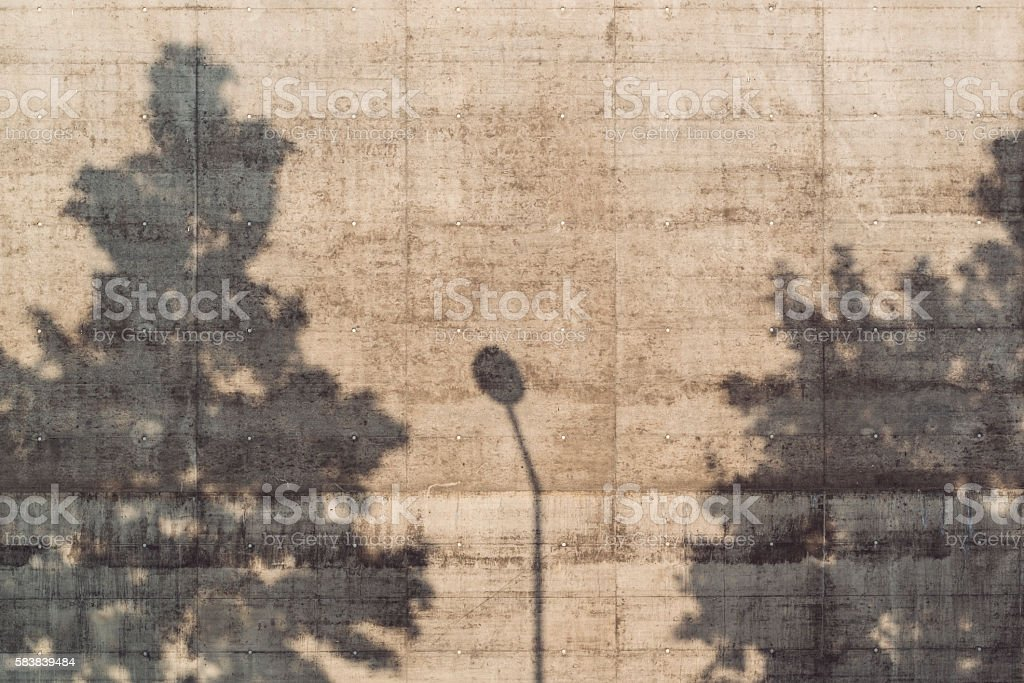shadow of trees on a concrete wall stock photo