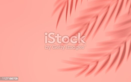 istock Shadow of tropical palm leaves on the wall. Summer tropical leaf. Exotic hawaiian jungle foliage, summertime background. Minimal style. 3d render 1127186709