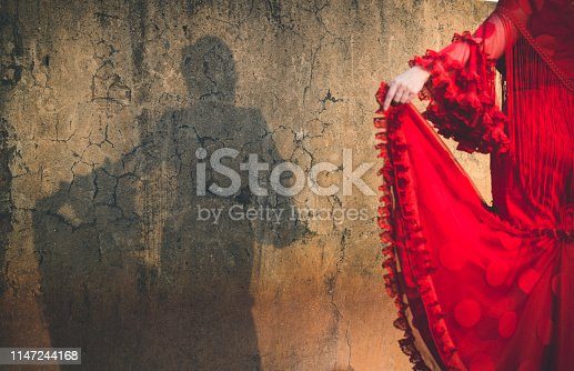 Shadow of woman dressed in flamenco dress on cracked wall, focus on wall shadow and out of focus dress
