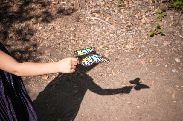 Shadow of young girl playing with her toy butterfly outdoors stock photo