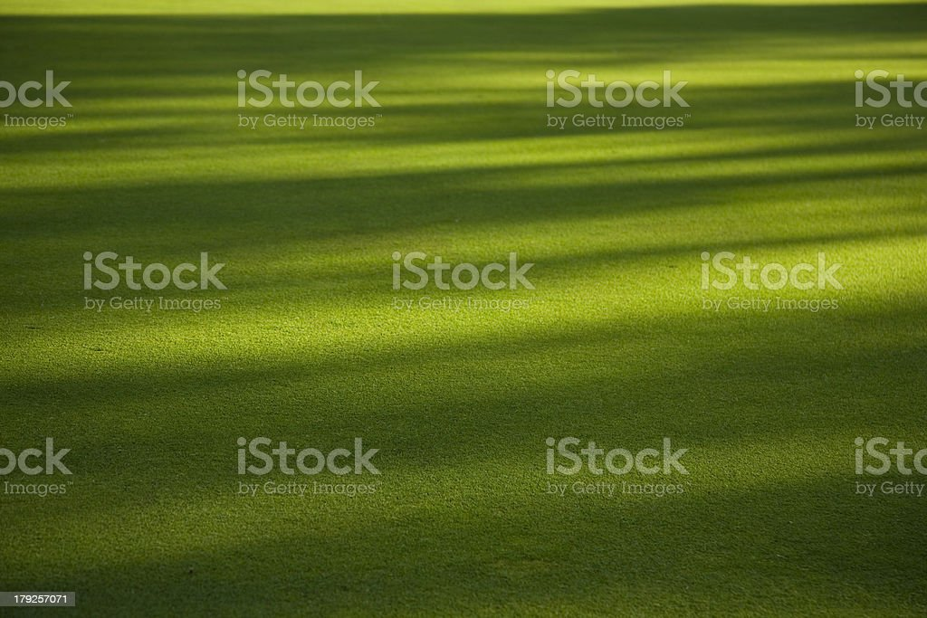 Shadow on the grass field stock photo