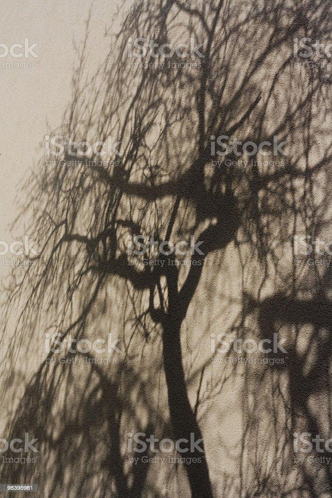 Shadow foto stock royalty-free