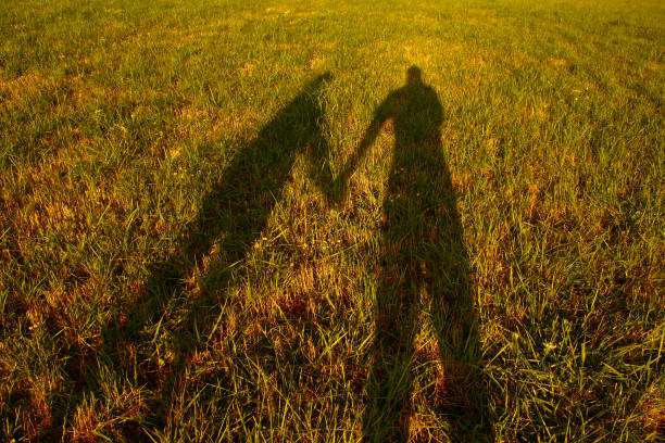 shadow silhouette of couple holding hands on meadow at sunset stock photo