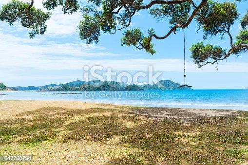 istock Shadows and swing under pohutukawa trees along beachfront 647760794
