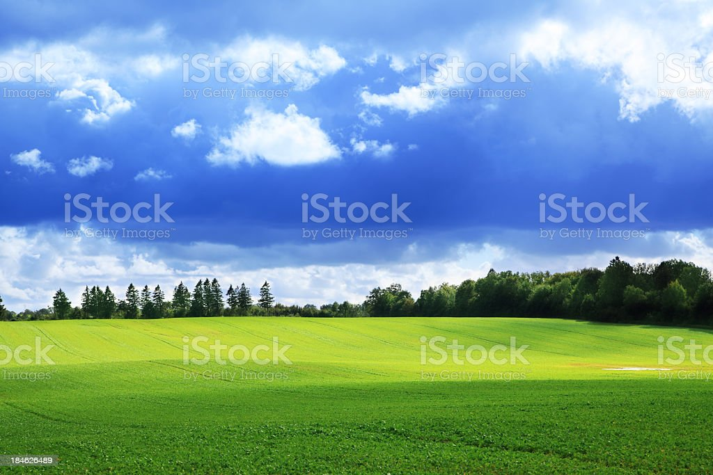 Shadows Dancing on Rolling Hills - Green Field Landscape royalty-free stock photo