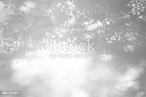 istock Shadows from foliage on a plastered wall 684102484