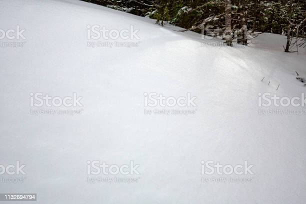 Photo of Shadows of branches in snow drifts in Rangeley, Maine.