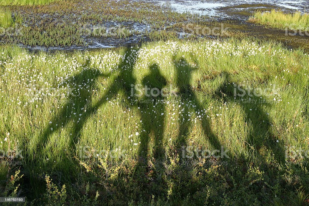 Shadows of dancing people on a green grass stock photo