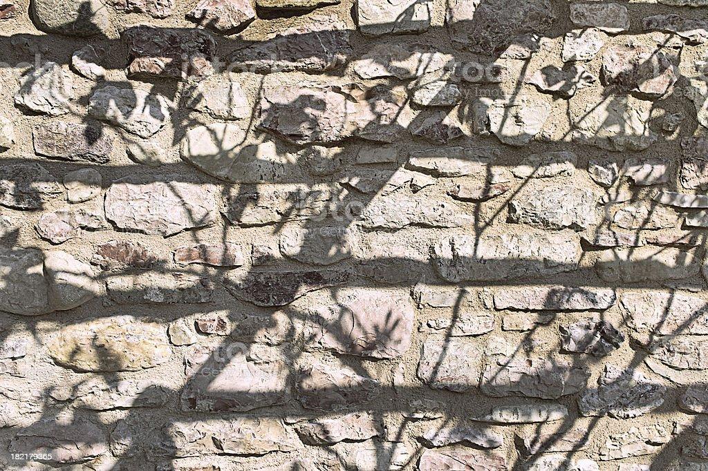 Shadows of fig leaves on stone masonry stock photo